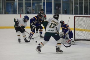 Fokis-Hockey-1024x682